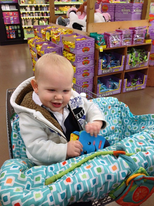 Ezra at the grocery store