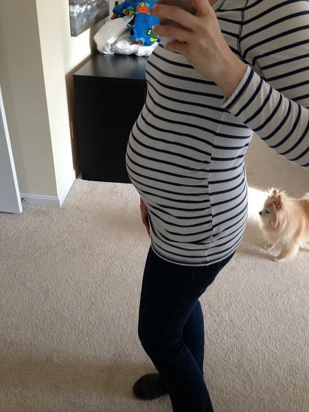 2nd pregnancy 24 week bump