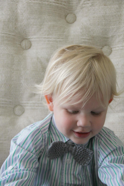 Charmingly Modern grey bow tie