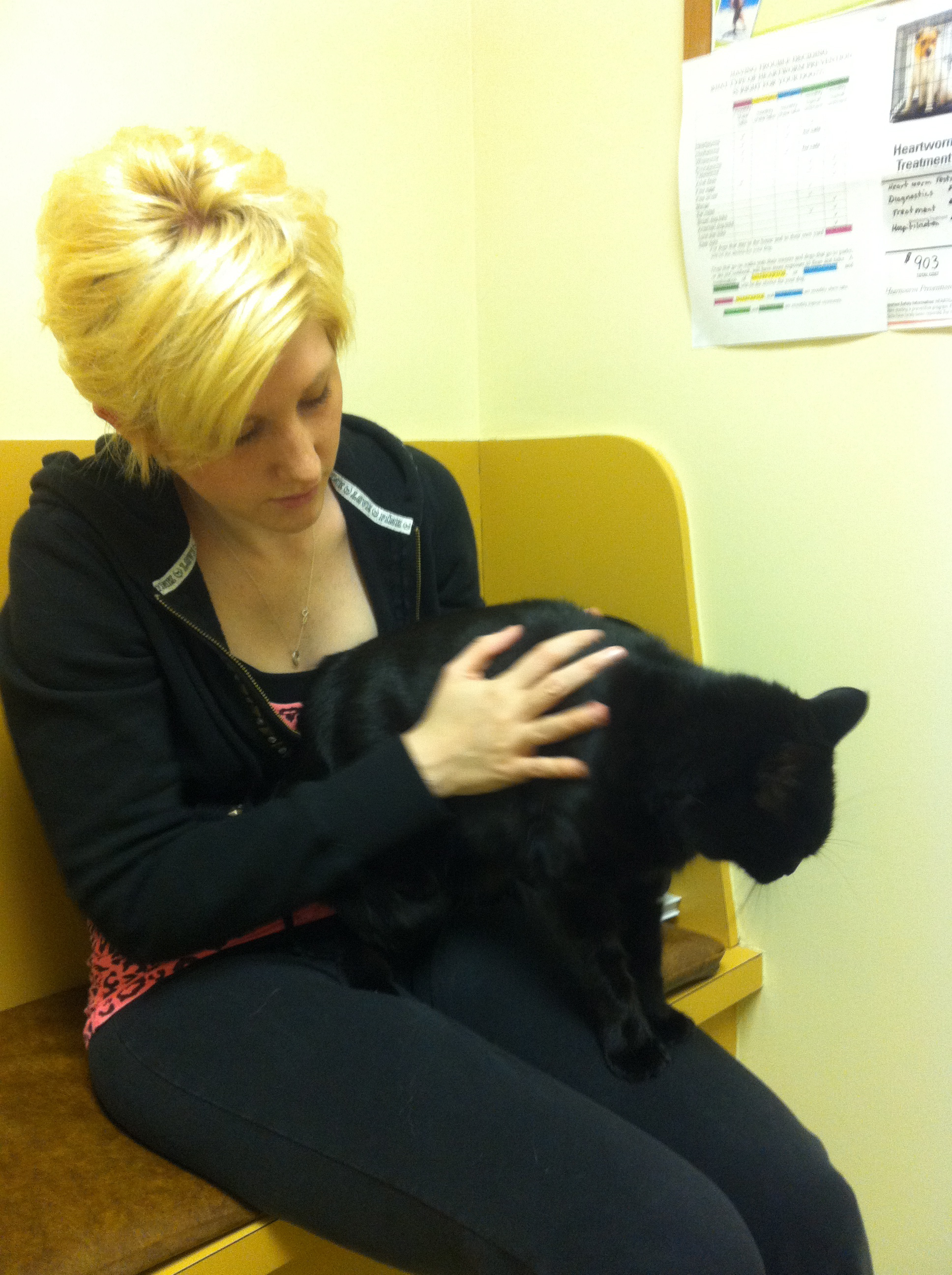 Caspian on my lap at the vet's office